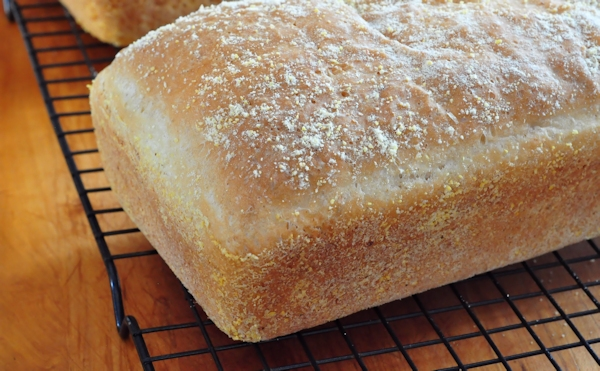 English Muffin Bread - The Creekside Cook
