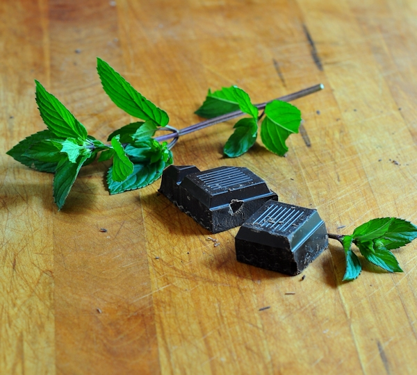 Fresh Mint and Dark Chocolate for Fresh Mint Chocolate Chip Ice Cream on The Creekside Cook