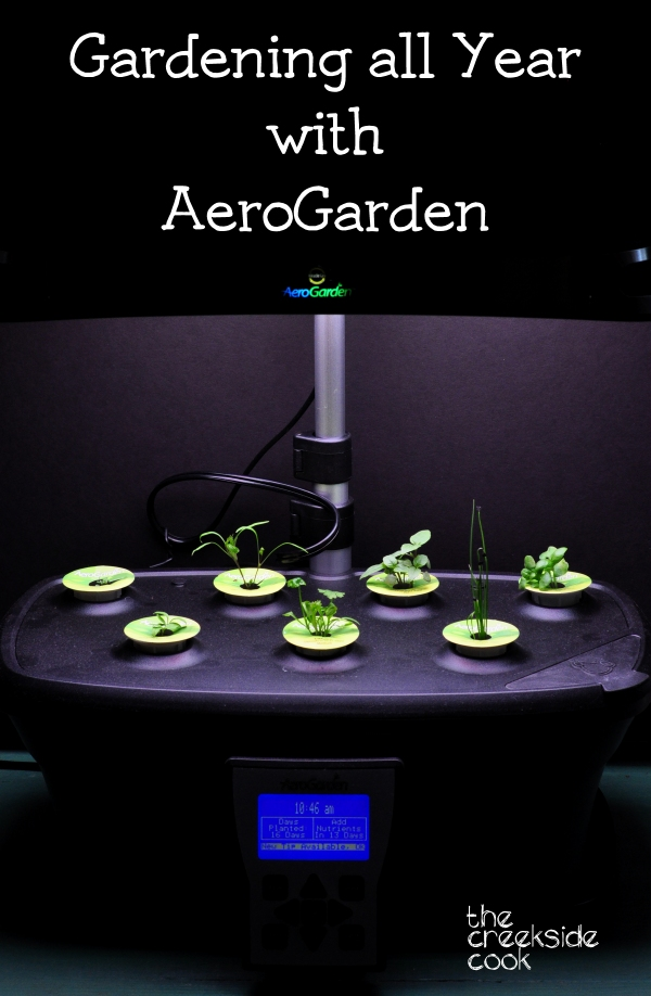 Checking out all year gardening with Aerogarden on The Creekside Cook