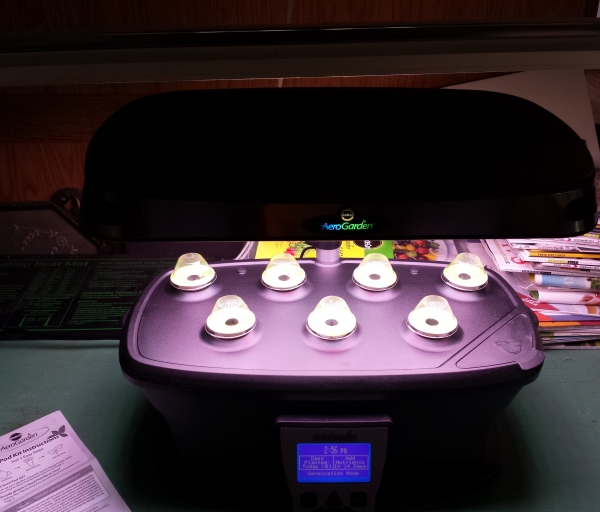 The set up AeroGarden on The Creekside Cook