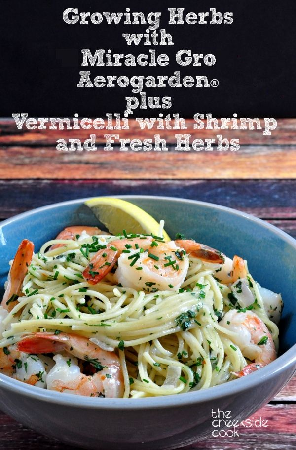 Vermicelli with Shrimp and Fresh Herbs on The Creekside Cook