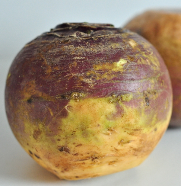 Raw rutabaga for Rutabaga Cheddar Mash on The Creekside Cook