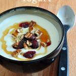 Homemade Greek Yogurt on The Creekside Cook